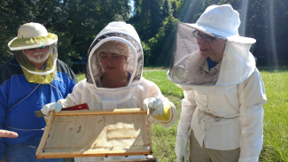 Macy Hagan sustainable bee research summer fellowship