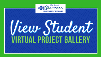 View student virtual project gallery Symposium