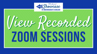 View recorded Zoom sessions YouTube
