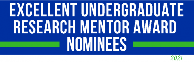 Faculty mentor of the year award nominees banner